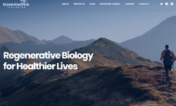 website design Clients Jupiter Biorestorative Therapies
